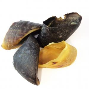 dried cow hooves, performance pet foods